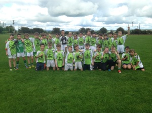 sciath na scoil boys team 2015